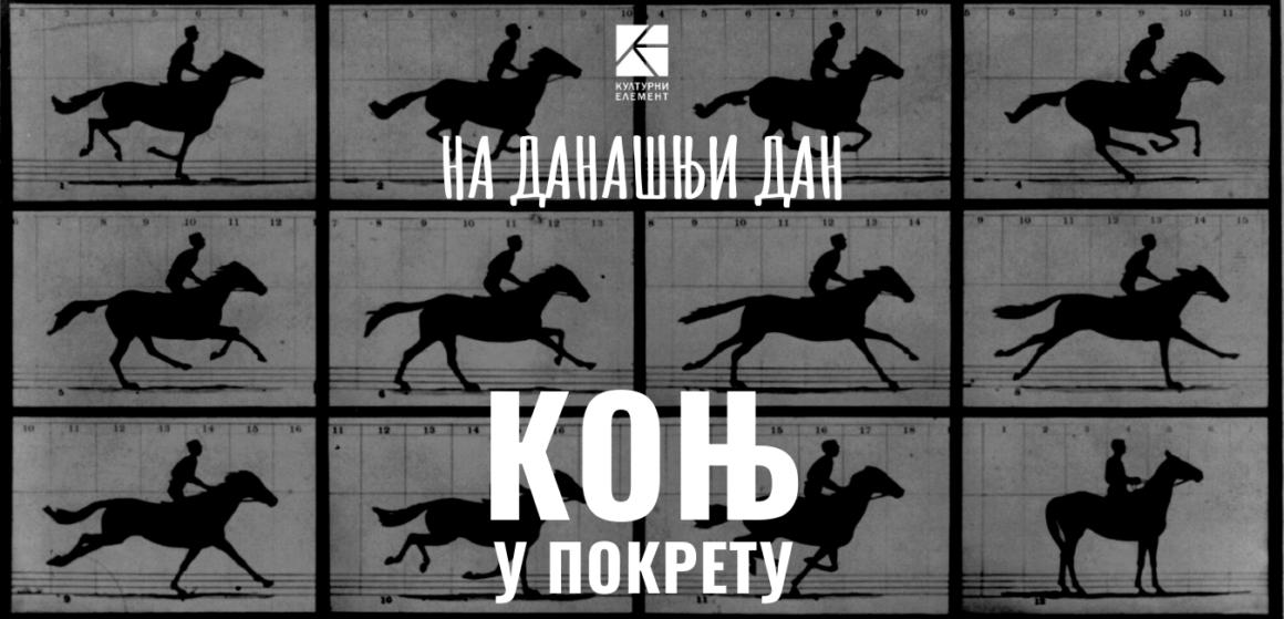 Коњ у покрету
